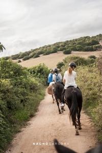 imagen menorca horses